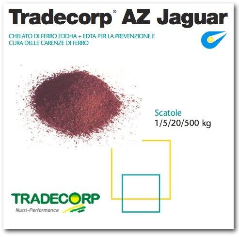 Tradecorp-az-jaguar-chelati-ferro