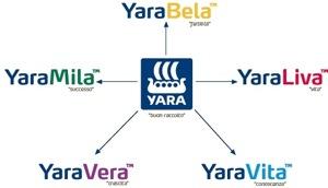 Yara-News-5-Powerbrands-schema