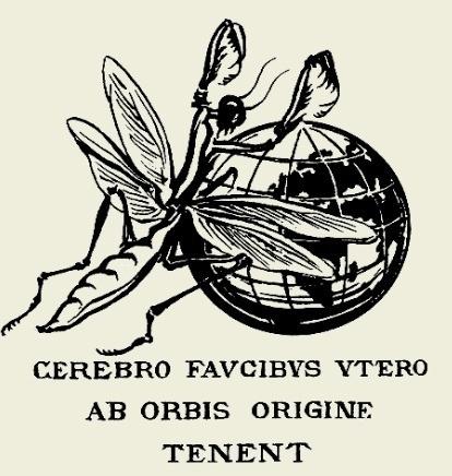 accademia-nazionale-italiana-entomologia-logo-sito.jpg