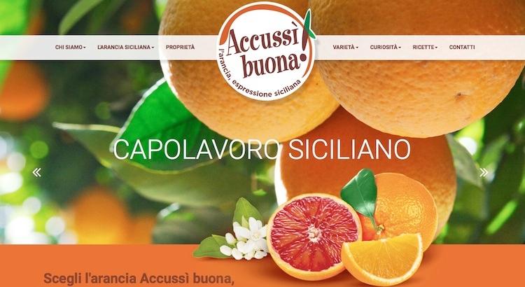 accussi-buona-homepage2015