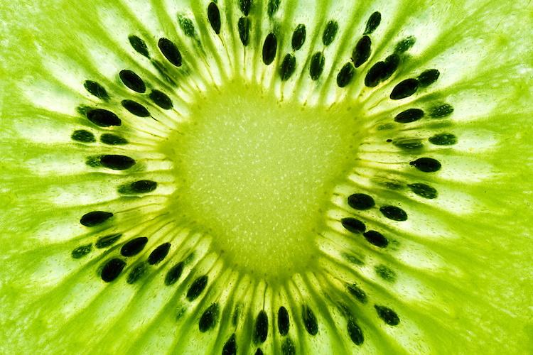 Kiwi, nuova ondata di entusiasmo in Italia - Plantgest news sulle varietà di piante