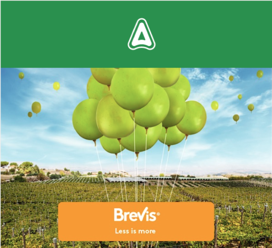 adama-brevis-uva-tavola