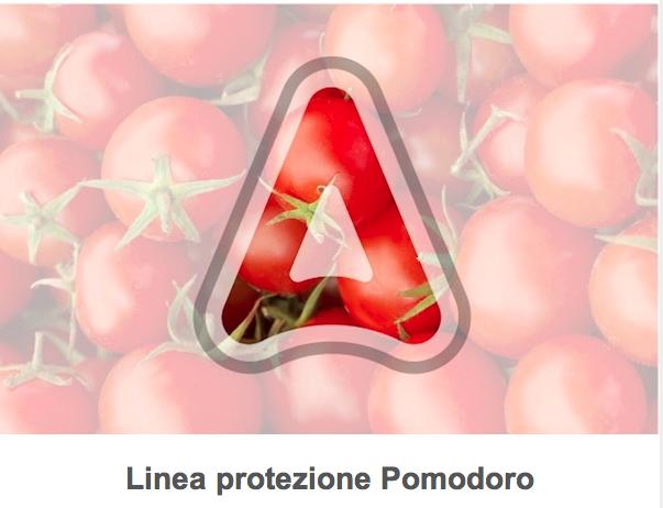 adama-linea-pomodoro.png