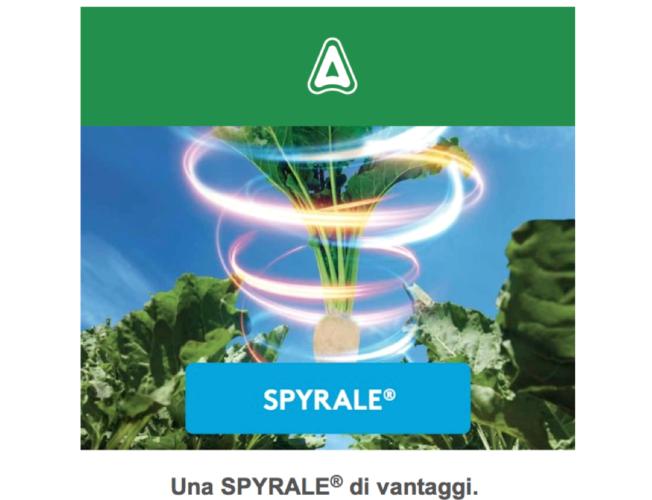 adama-spyrale-2018.png