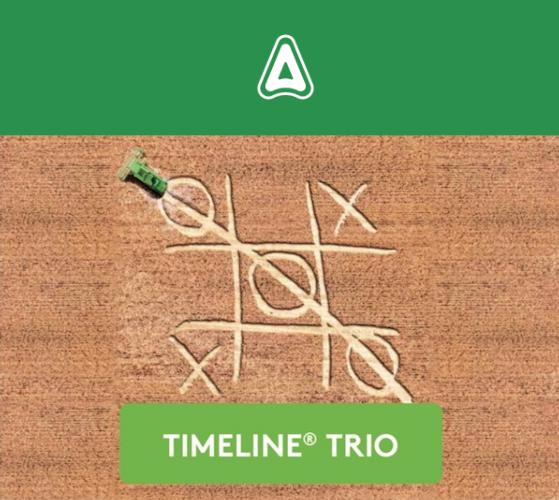 adama-timeline-trio
