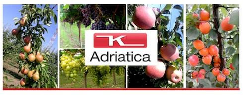 adriatica-dry-k30