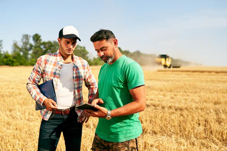 agricoltori-campo-grano-tablet-agricoltura-di-precisione-by-artiemedvedev-adobe-stock-750x500