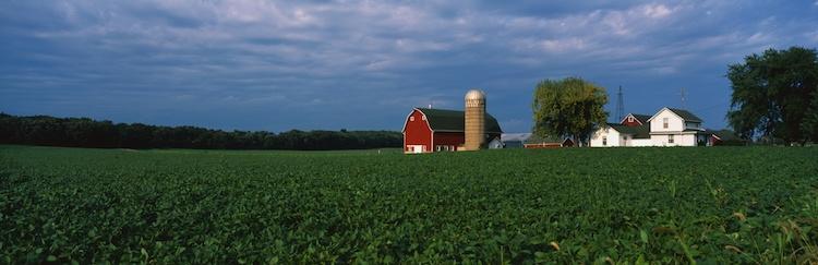 agricoltura-americana-fattoria-silos-fienile-campo-by-spiritofamerica-fotolia-750.jpeg