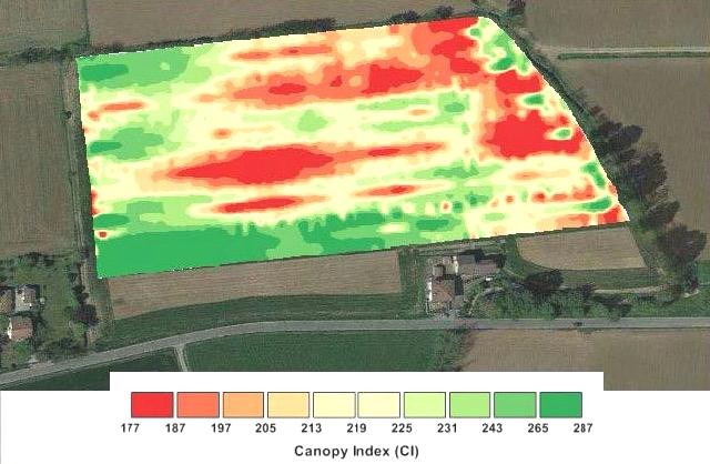agricoltura-di-precisione-mappa-vigore-cio-da-relazione-risultati-sperimentali-2015-cio-marco-dreni