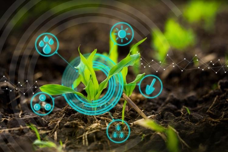 agricoltura-digitale-nuove-tecnologie-by-lamyai-stock-750x5001.jpeg