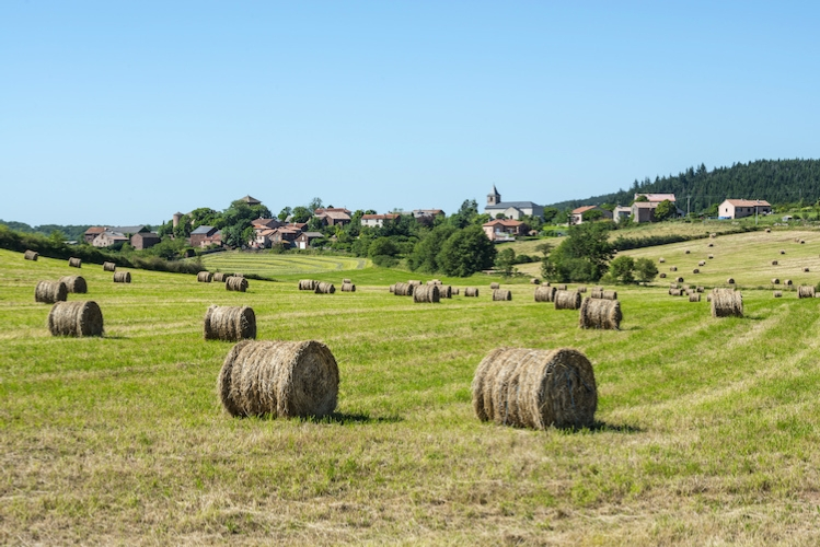 agricoltura-francese-francia-by-claudio-colombo-adobe-stock-750x501