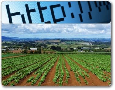 agricoltura-internet-200703081