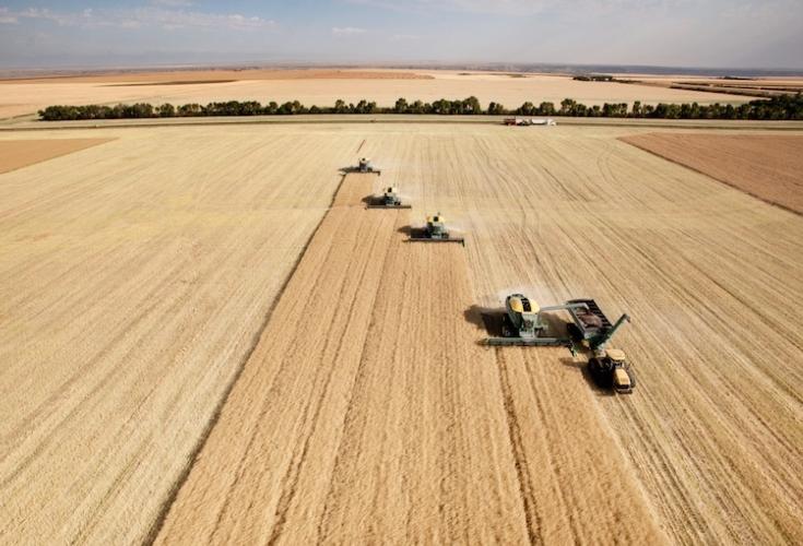 agricoltura-lavoro-agricolo-campo-grano-raccolto-trattori-macchine-agricole-tyler-olson-fotolia-750.jpg