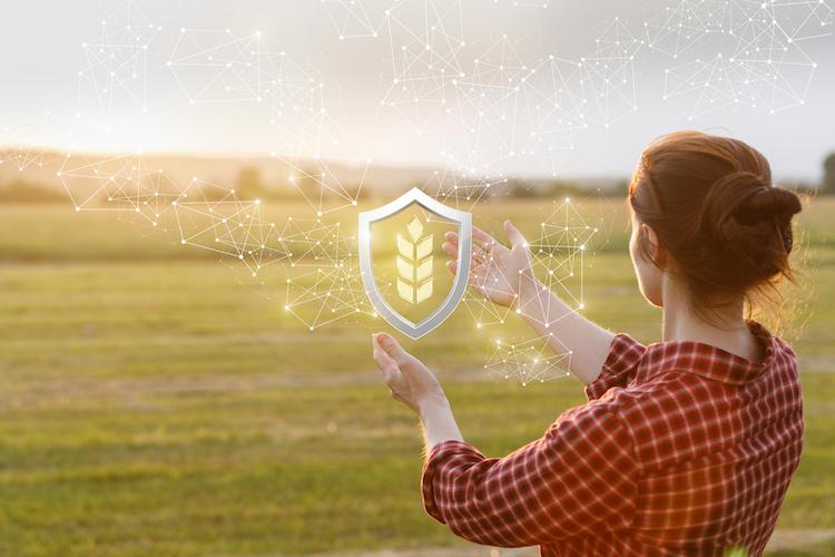 agricoltura-raccolto-by-natali-mis-adobe-stock-750x500