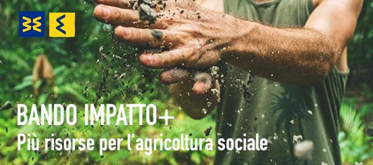 agricoltura-sociale-bando-impatto-piu