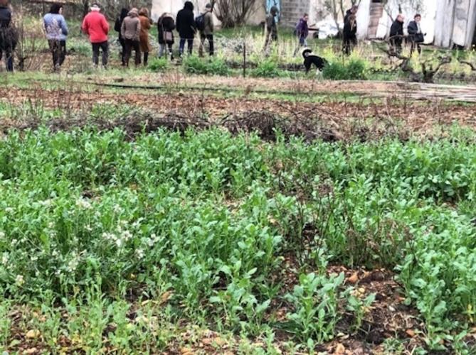 agricoltura-urbana-progetto-madre-fonte-interreg-mediterranean