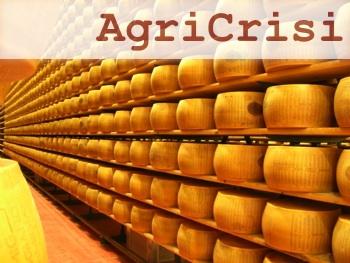 agricrisi-forme-parmigiano-reggiano-scaffali-350
