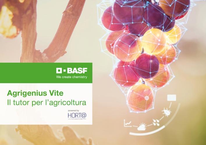 agrigenius-vite-tutor-agricoltura-dicembre-2020-fonte-basf