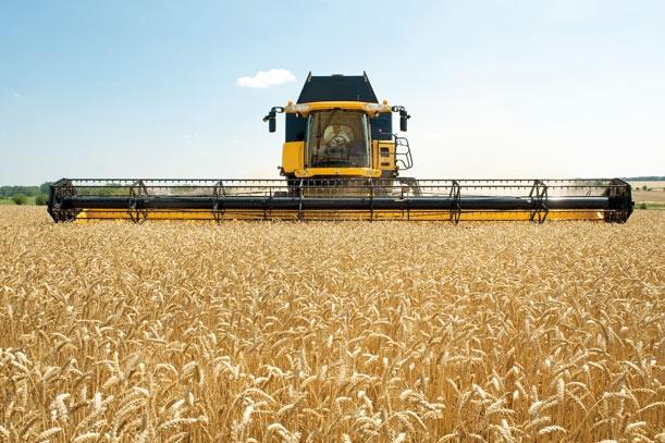agrilevante-foto-by-fiera-levante-federunacoma-filiera-cereali