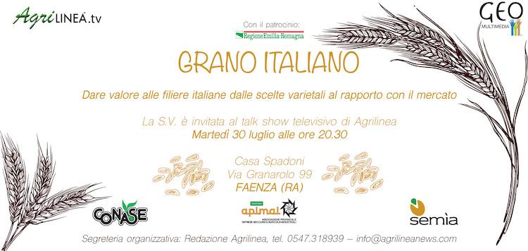 Grano italiano: dalle scelte varietali al rapporto con il mercato