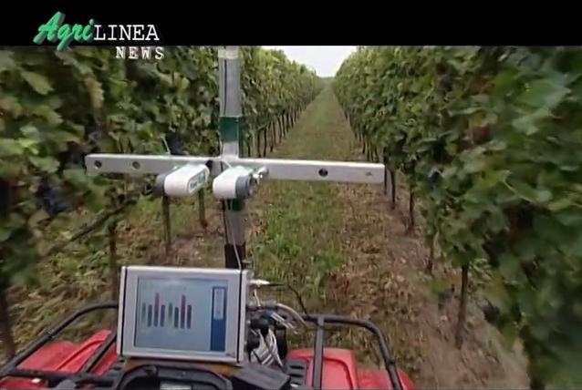 agrilinea-news-video-interviste-certificazione-magis-nov-2013
