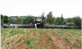 agrishow-da-sito-veneto-agricoltura.jpg