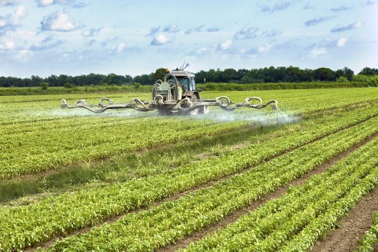 agrofarmaci-fitosanitari-distribuzione-by-federico-rostagno-fotolia-750.jpeg