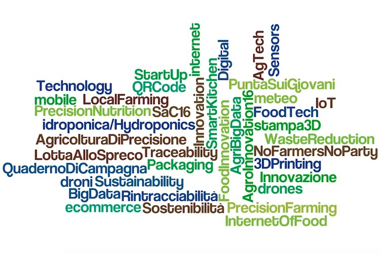 agroinnovation-tour-seeds-and-chips-wordcloud-by-wordlenet