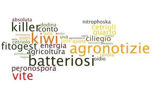 agronotizie-parole-ricerca-motori-agricoltura-riviste-2011-bywordlenet2