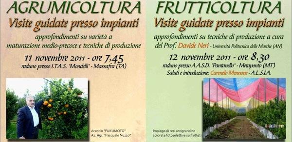 agrumicoltura-frutticoltura-covil-novembre-2011