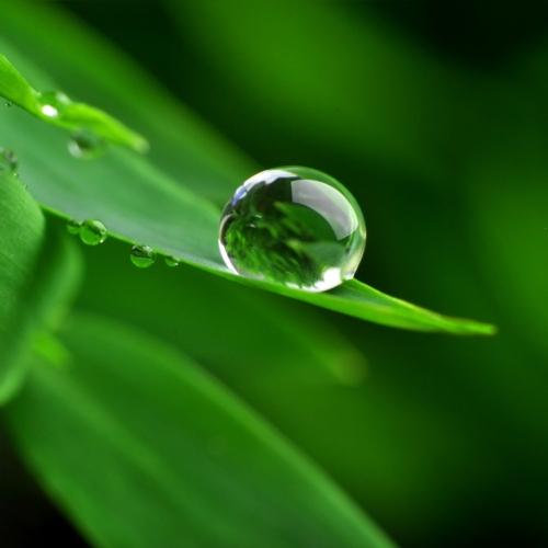 ambiente-acqua-sostenibilita-goccia-by-stefan-korber-fotolia-750