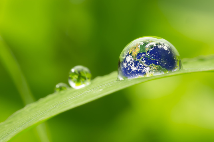ambiente-energie-rinnovabili-sostenibilita-by-hankimage9-adobe-stock-750