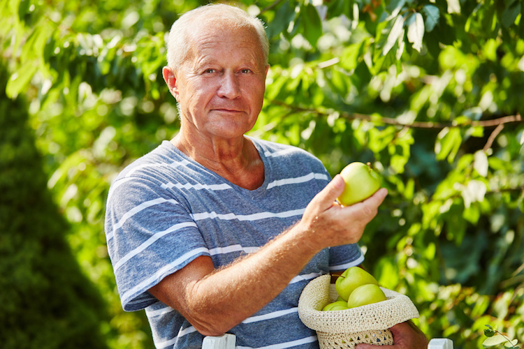 anziano-anziani-agricoltura-sociale-by-robert-kneschke-fotolia-750.jpeg