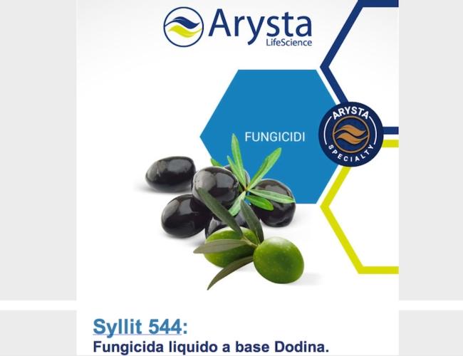 arysta-dodina-rogna-ulivo