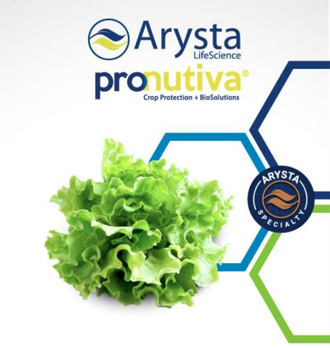 arysta-pronutiva-lattuga.png