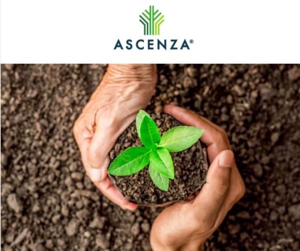 ascenza-novita-2021.jpg