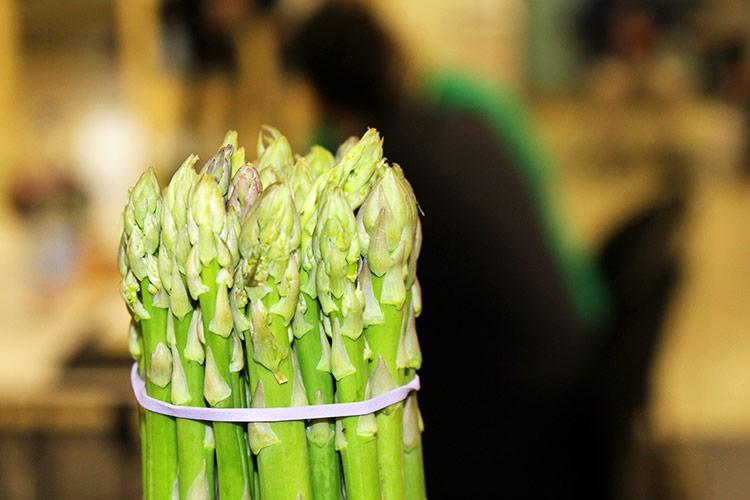 Asparago, inzia una nuova era - Plantgest news sulle varietà di piante