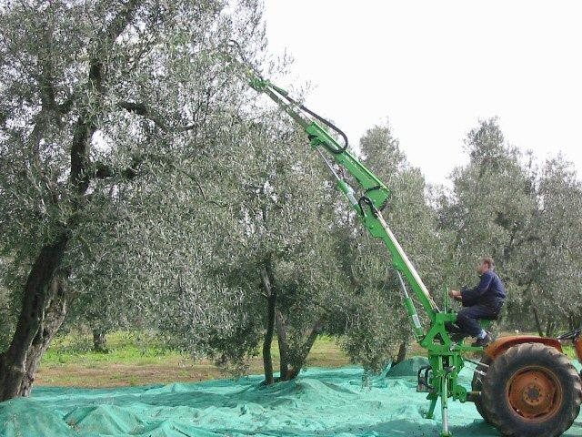 Asquini Di Viterbo Un Azienda Dalle Mille Potenzialità Agronotizie Agrimeccanica