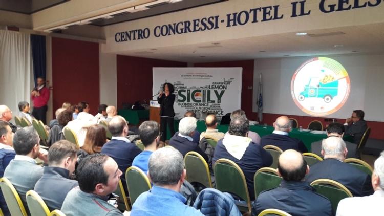 assemblea-rinnovo-patto-sviluppo15nov2016distrettoagrumisicilia