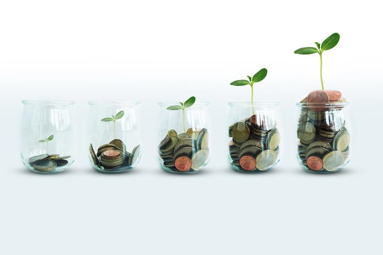 assicurazioni-piante-soldi-monete-vasetti-by-adrianilie825-adobe-stock-750.jpeg