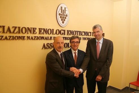 assoenologi-vicepresidente-defilippi-presidente-cotarella-vicepresidente-stephan-2013.jpg