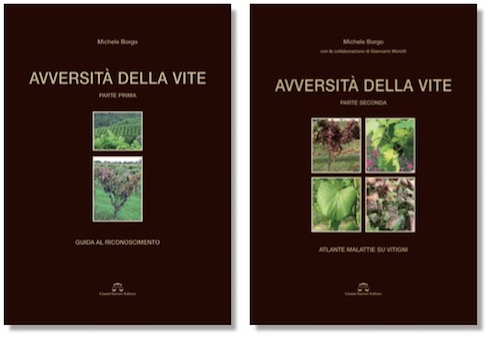 avversita-della-vite-libro-michele-borgo-20160606