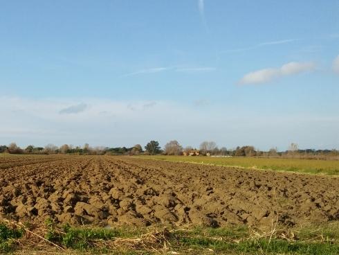 azienda-agricola-terreno-arato-by-matteo-giusti-agronotizie