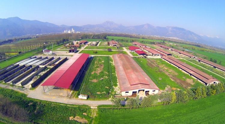 azienda-fattoria-reale-del-torcino16feb2016fattorie-garofalo