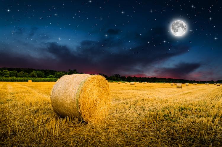 balle-di-fieno-campo-notte-luna-piena-agricoltura-notturna-by-klagyivik-adobe-stock-750x497