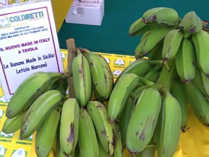 bananesiciliafruttiletiziamarceno.jpg
