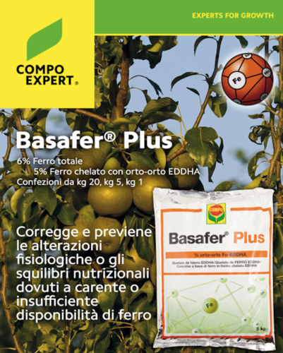 basafer-plus-futurpera-fonte-compo-expert.png