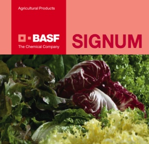 basf-signum-lattuga