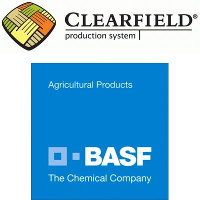 basf_clearfield_riso_prodotto_azienda_2.jpg