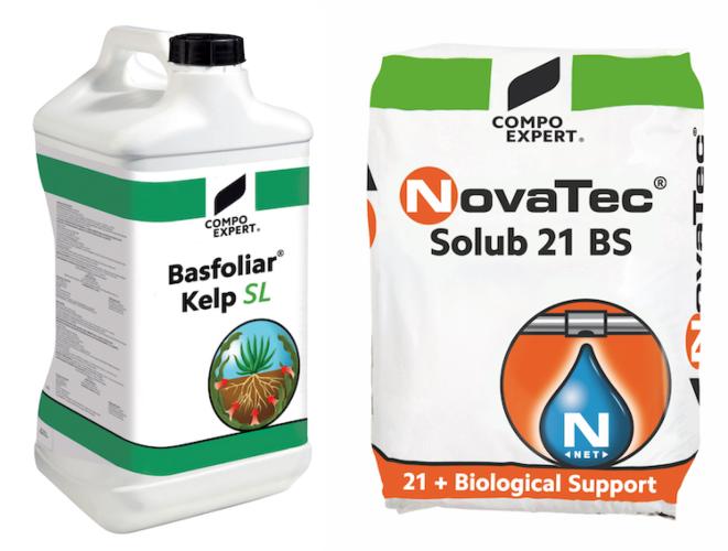 basfoliar-kelp-sl-novatec-solub-21-bs-fonte-compo-expert